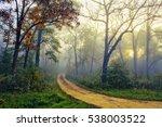 pathway through a beautiful...   Shutterstock . vector #538003522