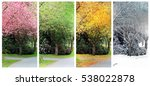 spring  summer  fall and winter.... | Shutterstock . vector #538022878