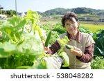 Asian Senior Cultivating...
