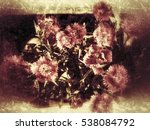 grunge flower background and... | Shutterstock . vector #538084792