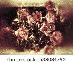 grunge flower background and... | Shutterstock . vector #538084792
