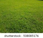 texture of fresh green grass... | Shutterstock . vector #538085176