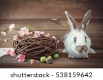 easter bunny  with easter eggs... | Shutterstock . vector #538159642