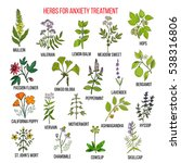 Collection Of Herbs For Anxiet...