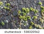 Detail Of Rocks On A Coast....