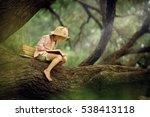 a pretty little blonde girl in... | Shutterstock . vector #538413118