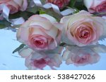 pink roses on water background   Shutterstock . vector #538427026