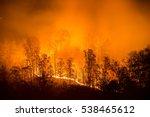 An Autumn Wildfire Blazes In...