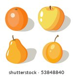 Set of four orange fruits on white background - stock vector