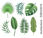 vector set of tropical leaves.... | Shutterstock .eps vector #538533076