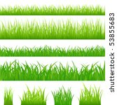 4 backgrounds of green grass...   Shutterstock .eps vector #53855683