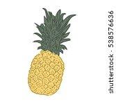 pineapple | Shutterstock .eps vector #538576636