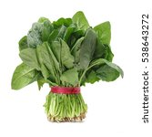 spinach on white background | Shutterstock . vector #538643272