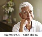 portrait of sad senior asian... | Shutterstock . vector #538648156