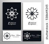 black and white design element  ... | Shutterstock .eps vector #538649245