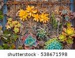 Flowers On Metal Wall