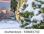 red berries on christmas time...   Shutterstock . vector #538681732