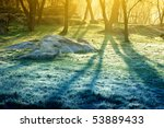 lights of the morning forest | Shutterstock . vector #53889433