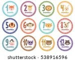 monthly baby stickers with cute ... | Shutterstock .eps vector #538916596