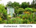 An Allotment Garden Filled Wit...