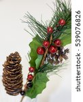 spruce branch with cones and...   Shutterstock . vector #539076826