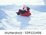 winter sledding   Shutterstock . vector #539121406