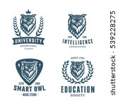 set of badges labels logo... | Shutterstock .eps vector #539228275