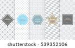 light grey seamless pattern... | Shutterstock .eps vector #539352106