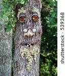 tree face | Shutterstock . vector #539368