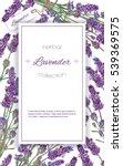 vector lavender flower elegant...   Shutterstock .eps vector #539369575