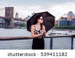 raining day   grainy  foggy ... | Shutterstock . vector #539411182