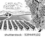 vineyard valley landscape black ... | Shutterstock . vector #539449102
