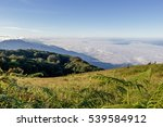 Mountain Pastures In The...