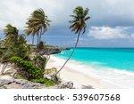 Tropical Beach Bottom Bay On...