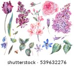 spring set vintage watercolor... | Shutterstock . vector #539632276