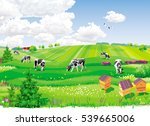 summer rural landscape with... | Shutterstock .eps vector #539665006