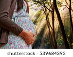 pregnant woman in a summer... | Shutterstock . vector #539684392