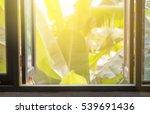 open wooden windows with banana ... | Shutterstock . vector #539691436