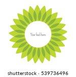 decorative  unusual  round... | Shutterstock .eps vector #539736496