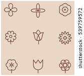 flowers line icons | Shutterstock .eps vector #539759572