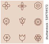 flowers line icons | Shutterstock .eps vector #539759572