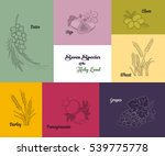seven species of the holy land  ... | Shutterstock .eps vector #539775778