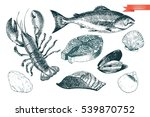 vector hand drawn set of... | Shutterstock .eps vector #539870752