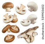 edible mushrooms. shiitake ... | Shutterstock .eps vector #539903602