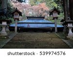 temple in autumn japan | Shutterstock . vector #539974576