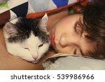 Preteen Handsome Boy With Cat...