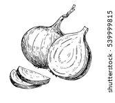 onion hand drawn vector... | Shutterstock .eps vector #539999815