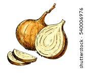 yellow onion hand drawn vector... | Shutterstock .eps vector #540006976