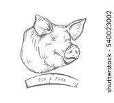 Engraving Head Of Pig. Sketch...
