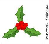 sprig of mistletoe isolated.... | Shutterstock . vector #540063562